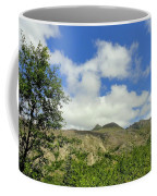 Mt St Helens 2 Coffee Mug