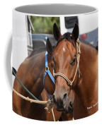 Mule Days Benson Coffee Mug
