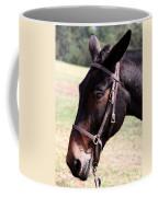 Mule Coffee Mug