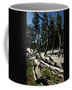 Mules Ear Timber Coffee Mug