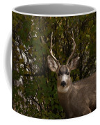 Mulie Buck Coffee Mug