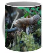 Mushroom Up Close 7046 1676 Coffee Mug