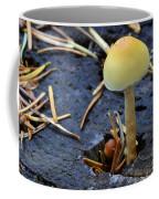 Mushrooms 1 Coffee Mug