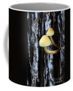 Mushrooms 3 Coffee Mug