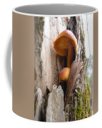 Mushrooms On A Tree Coffee Mug