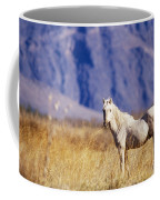 Mustang Coffee Mug by Mark Newman and Photo Researchers