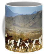 Mustangs Coffee Mug by Mark Newman and Photo Researchers