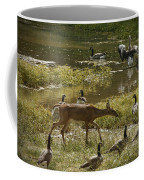 My Backyard Coffee Mug