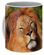My Funny Face Coffee Mug