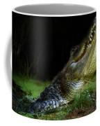 My Swamp Coffee Mug