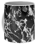 Mycoplasma Pneumoniae Sem Coffee Mug