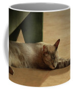 Naping In The Shade Coffee Mug