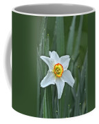 Narcissus In The Rain Coffee Mug
