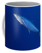 Narrow Barred Spanish Mackerel Coffee Mug