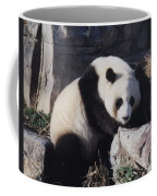 National Zoo Panda Coffee Mug