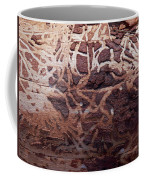 Natural Carvings Coffee Mug