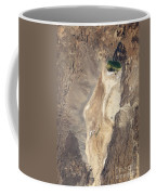 Natural-color Image Of The North End Coffee Mug