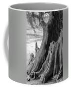 Natural Cypress Coffee Mug