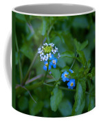 Natural Wonders Coffee Mug