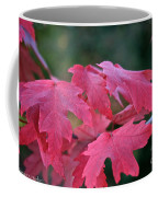 Naturally Vibrant Coffee Mug