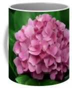 Nature's Gifts Coffee Mug