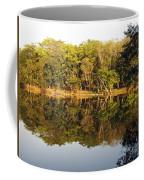 Natures Reflection Guatemala Coffee Mug
