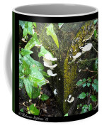 Natures Right Angle Degrees Coffee Mug