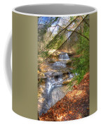 Natures Shadows And Light Coffee Mug