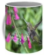 Nature's Treasures  Coffee Mug