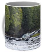 Nawadaha Falls 1 Coffee Mug