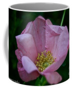 Nearly Spent Rose Coffee Mug