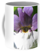 Nemesia From The Tapestry Mix Coffee Mug