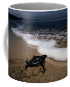Newly Hatched Leatherback Turtle Coffee Mug