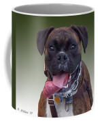 Nice Doggy Coffee Mug