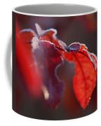 Nice Frost Jack Coffee Mug