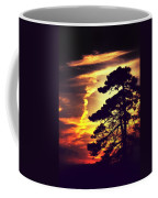 Night Falls Coffee Mug