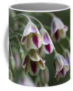 Nodding Bells. Coffee Mug