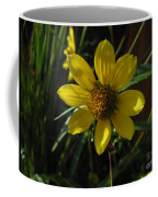 Nodding Bur Marigold Coffee Mug