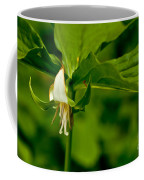 Nodding Trillium Coffee Mug