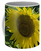 Normal Sun Coffee Mug