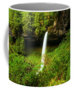 North Falls Canyon Coffee Mug