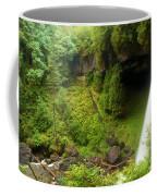 North Falls Waterfall Coffee Mug