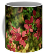 Northern Bilberry Coffee Mug