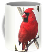 Northern Cardinal Closeup Coffee Mug