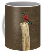 Northern Carmine Bee-eater Coffee Mug by Tony Beck