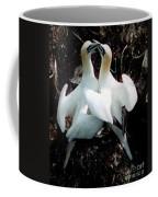 Northern Gannets Coffee Mug