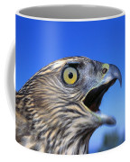 Northern Goshawk With Open Beak Coffee Mug