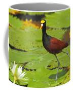 Northern Jacana Coffee Mug