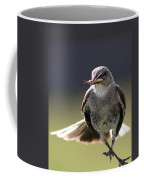 Northern Mockingbird - Lunch Is On The Way Coffee Mug