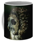 Northern Spotted Owl Strix Occidentalis Coffee Mug